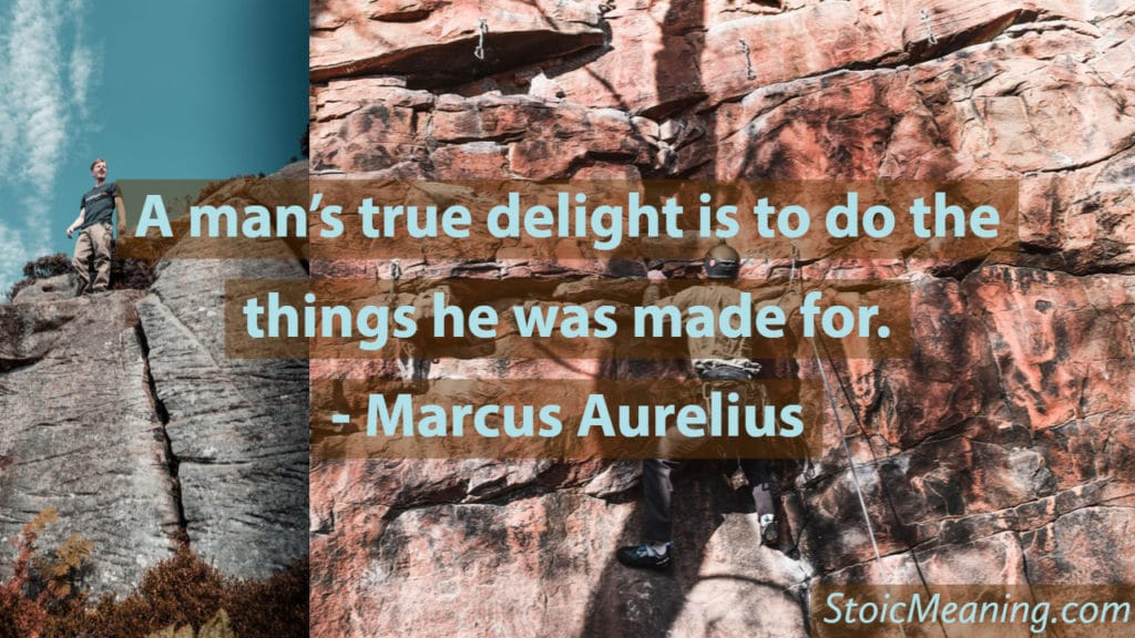 A man's true delight is to do the things he was made for.