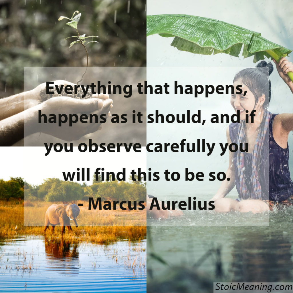 Everything that happens, happens as it should, and if you observe carefully you will find this to be so.